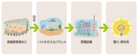 バイオガス 利用の流れ